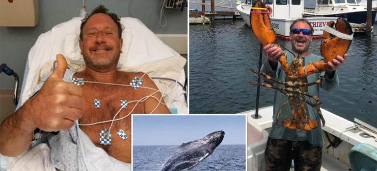 Kisah pria yang selamat setelah tertelan ikan paus bungkuk selama 40 detik